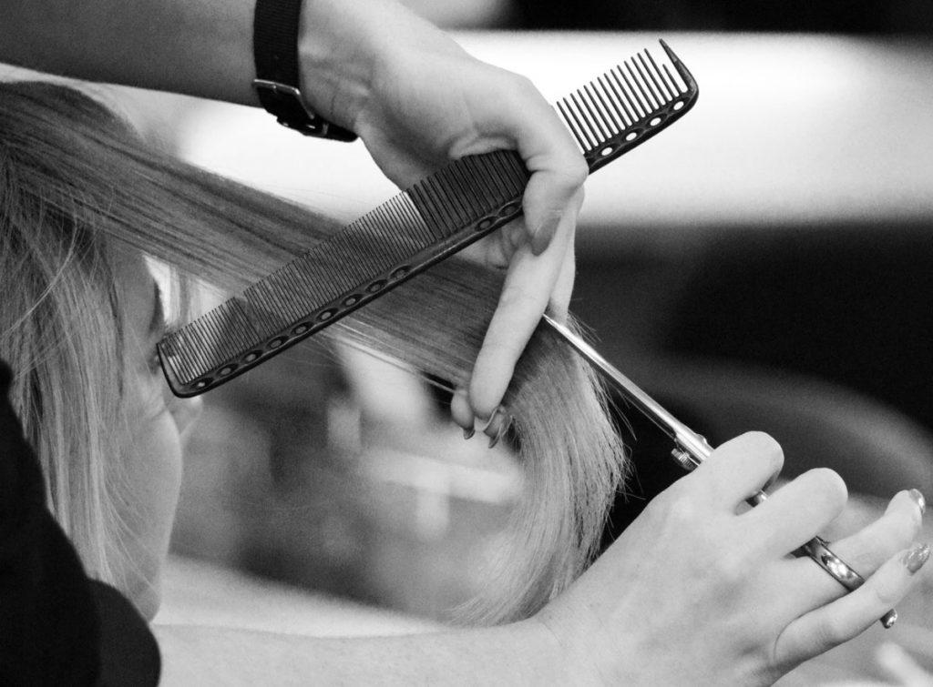Professional hair dresser cutting hair